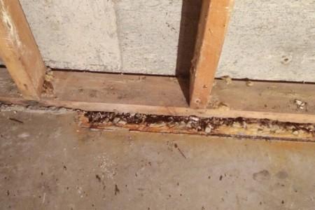 syll på hus med betongplatta