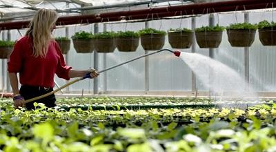 växthus på industrinivå