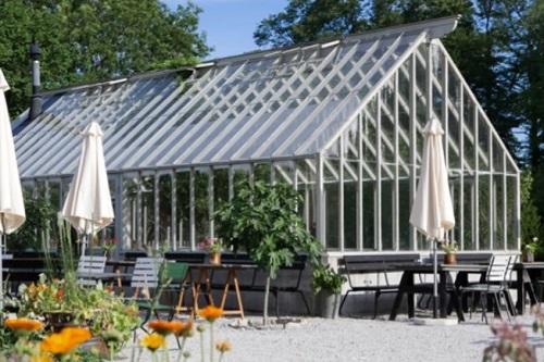 bygga växthus grund